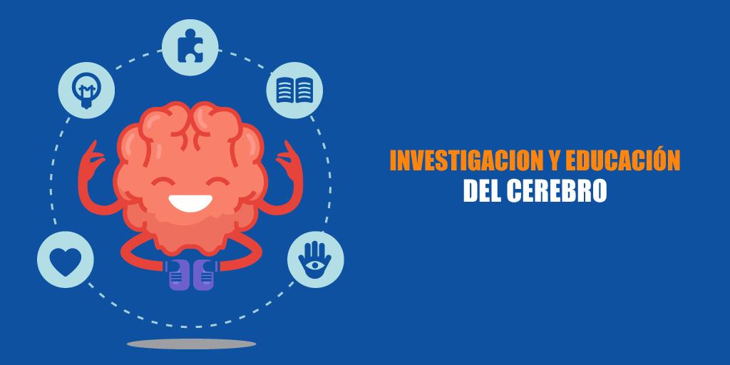 Investigación y Educación del Cerebro